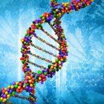 遺伝子工学の発展
