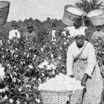 アメリカは、予定説によって奴隷制を維持した
