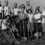 文化大革命により、多くの人が死に、若者は教育を受けなかった
