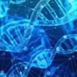 遺伝子工学の発達によって、人類の移動の跡をたどれるようになった