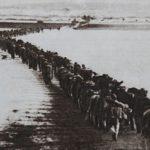 朝鮮戦争当事国の指導者たちは、個人的な利益のために戦争をした